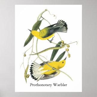 Prothonotary Warbler, John Audubon Poster