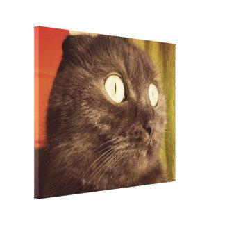 Proud And Elegant Munchkin Cat Canvas Print