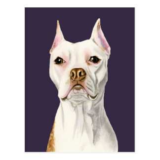 """Proud and Tall"" White Pit Bull Dog Portrait Postcard"