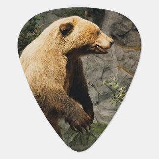 Proud Bear Guitar Pick