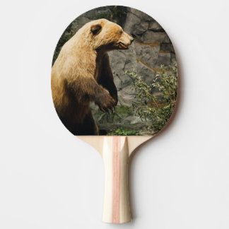 Proud Bear Ping Pong Paddle
