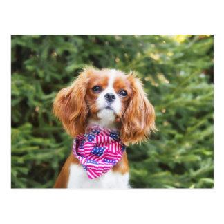 Proud Cavalier King Charles Spaniel Puppy Postcard
