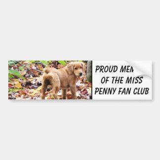 Proud member of the Miss Penny fan club. Bumper Sticker