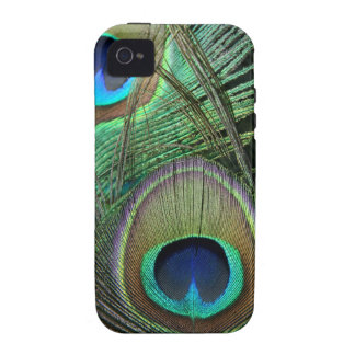 Proud Peacock Feathers iPhone 4 Case