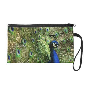 Proud Peacock Satin Clutch Bag Wristlet
