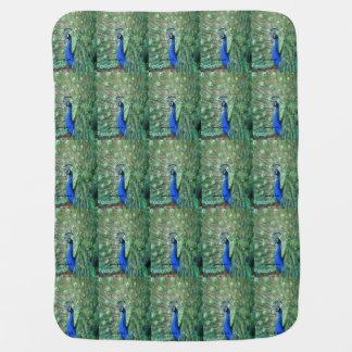 Proud Peacock Stroller Blanket