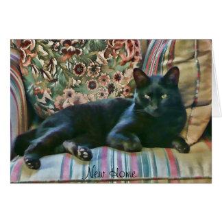 Proud Puss ,Black Cat Card