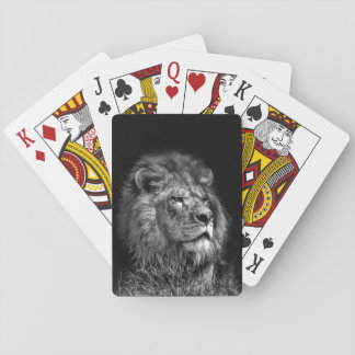 Proud Young Lion Playing Cards