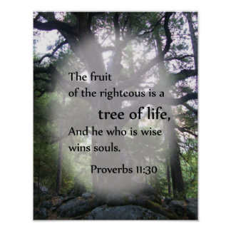 Proverbs 11:30 Tree of Life Poster
