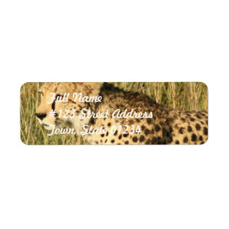 Prowling Cheetah Mailing Label