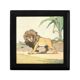 Prowling Jungle Lion Illustrated Gift Box