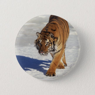 Prowling Tiger 2 Inch Round Button