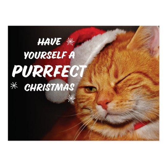 Prrrrfect Christmas Postcard