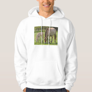 Przewalski's Horse and foal grazing Hoodie