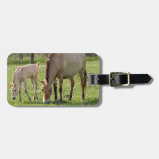 Przewalski's Horse and foal grazing Luggage Tag