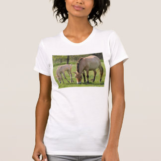 Przewalski's Horse and foal grazing T-Shirt