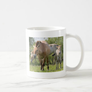 Przewalski's Horse and foal walking Coffee Mug