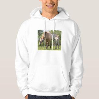 Przewalski's Horse and foal walking Hoodie