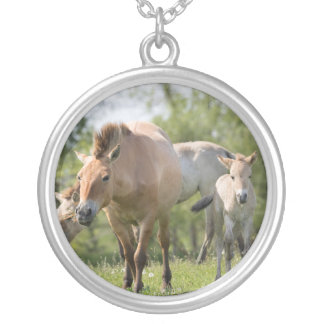Przewalski's Horse and foal walking Silver Plated Necklace