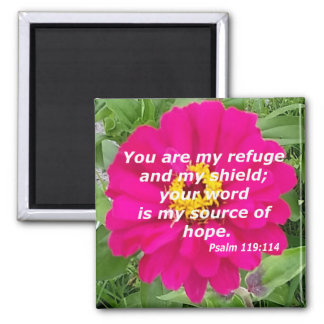 Psalm 119:114 magnet