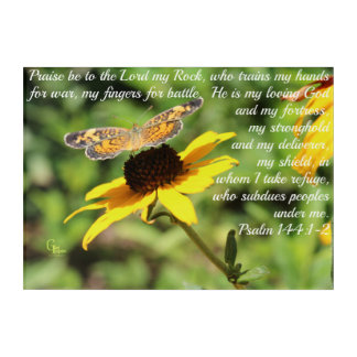 Psalm 144:1-2 Golden Blackeyed Susan Butterfly Acrylic Print