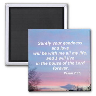 Psalm 23:6 magnet