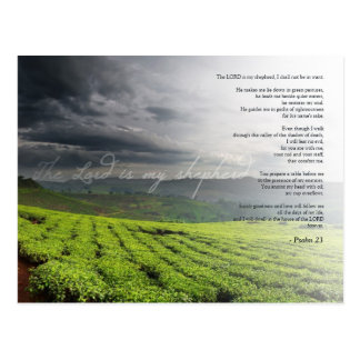Psalm 23  The LORD is my shepherd - Bible Postcard