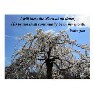 Psalm 34:1 postcard