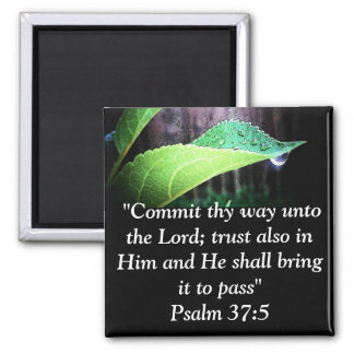 Psalm 37:5 magnet