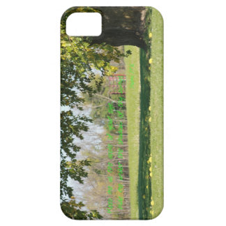 Psalms 17:8 iPhone 5 cases