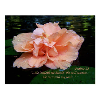 Psalms 23 Postcard