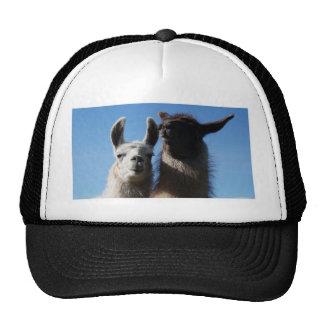 Pssst.... Trucker Hat