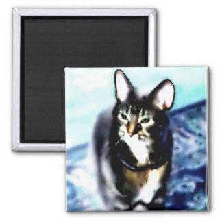 Psychadelic Kitty Magnet
