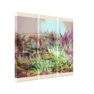 Psychadelic Succulents Canvas Print