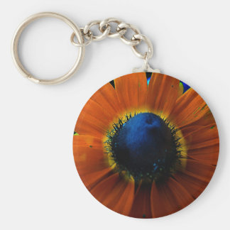 PsychadelicNess Keychain