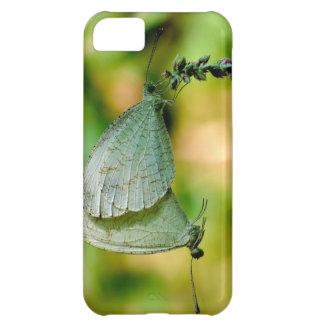 Psyche Leptosia Nina Butterflies Mating iPhone 5C Cases