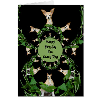 Psychedelic Beige Chihuahua Humorous Birthday Card