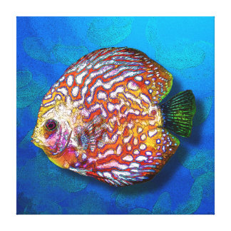Psychedelic Colorful Exotic Discus Fish Drawing Canvas Print