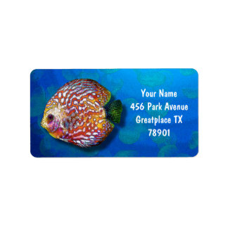 Psychedelic Colorful Exotic Discus Fish Drawing Label