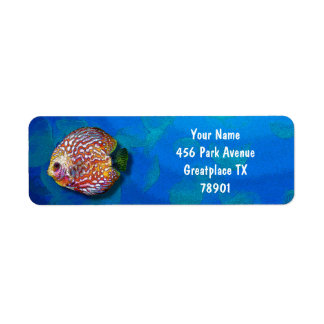 Psychedelic Colorful Exotic Discus Fish Drawing Return Address Label