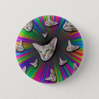 Psychedelic Tye Die Cat 2 Inch Round Button