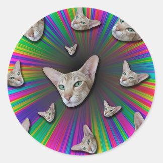 Psychedelic Tye Die Cat Classic Round Sticker