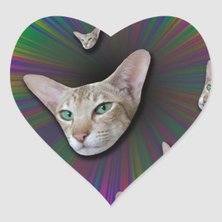 Psychedelic Tye Die Cat Heart Sticker