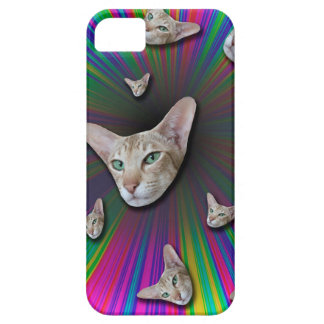 Psychedelic Tye Die Cat iPhone 5 Cases