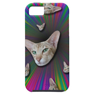 Psychedelic Tye Die Cat iPhone 5 Cover