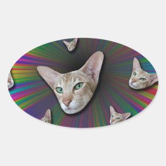 Psychedelic Tye Die Cat Oval Sticker