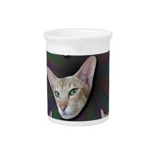Psychedelic Tye Die Cat Pitcher