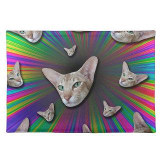 Psychedelic Tye Die Cat Placemat