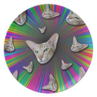 Psychedelic Tye Die Cat Plate