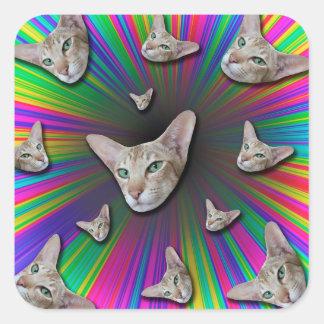 Psychedelic Tye Die Cat Square Sticker